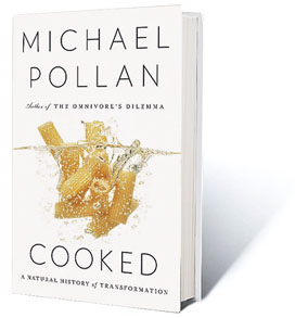Michael Pollan Cooked Review